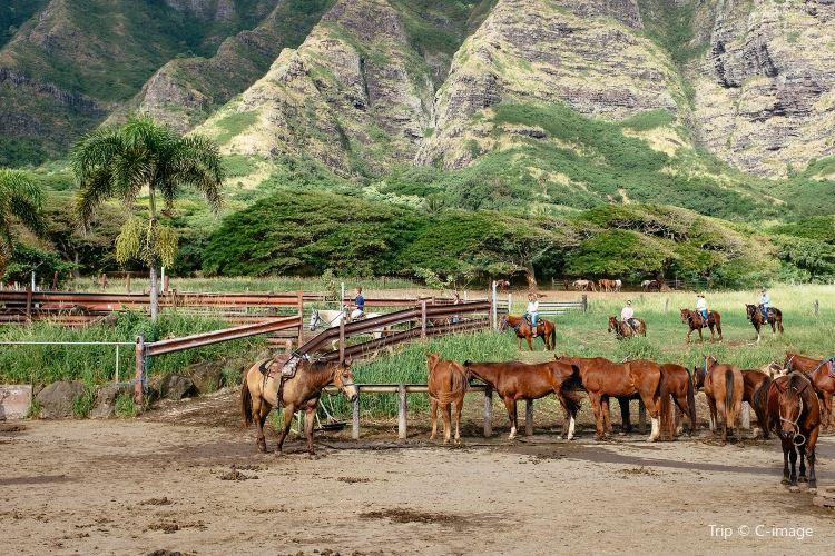 Kualoa Ranch2