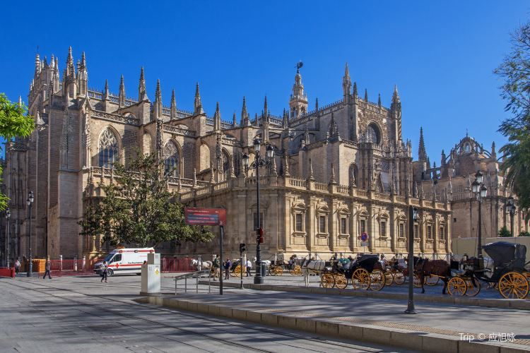 Seville Cathedral1