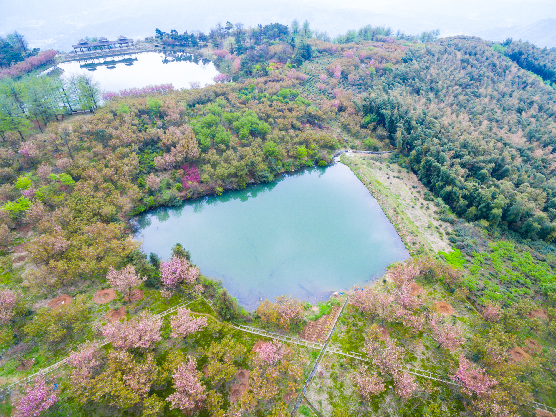 四明山地質公園景區