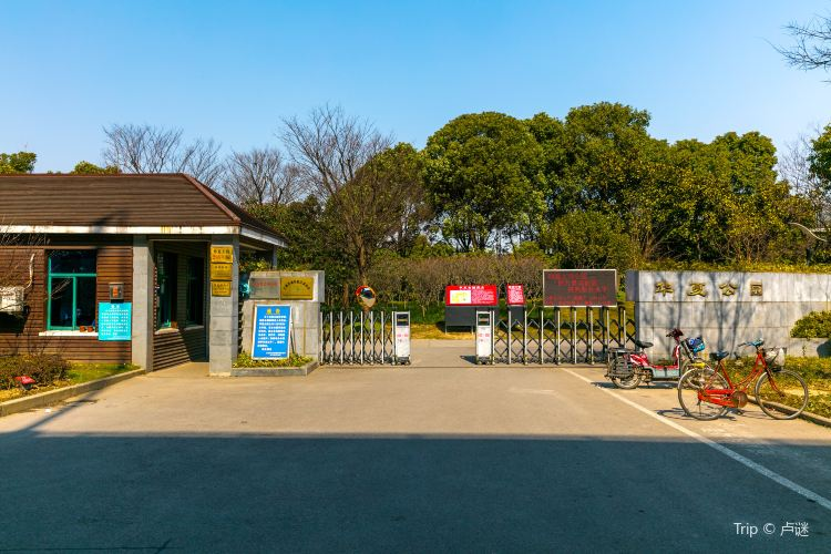Huaxia Culture Park2