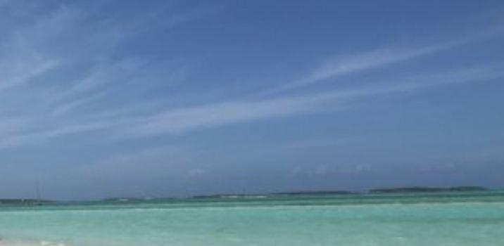 Shoreline Beach Club3