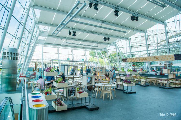 ArtSpace Museum1