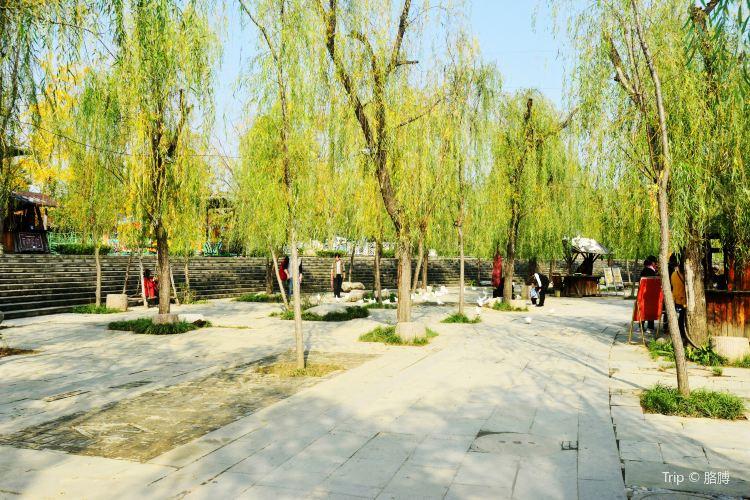 Shahe Wetland Park4