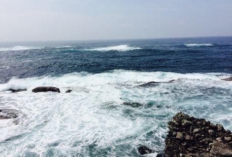 須崎恵比須島