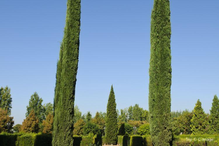 Park Federico Garcia Lorca1