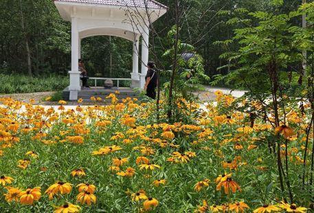 Forest Botanical Garden