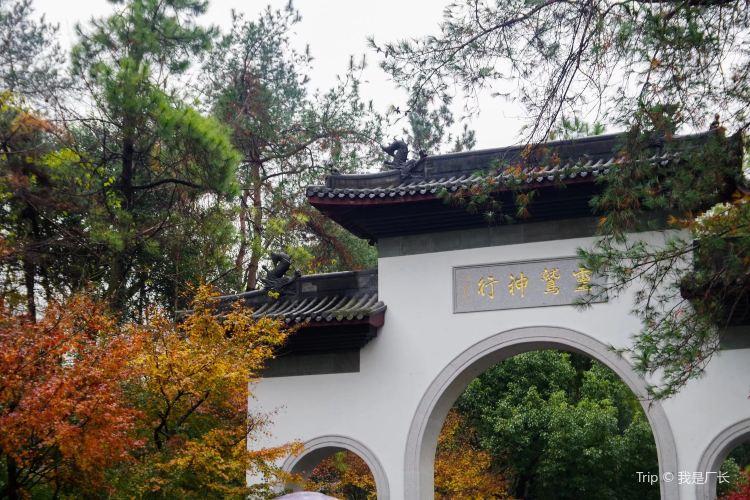 Hangzhou Lingyin Temple and Feilai Peak Scenic Spot1