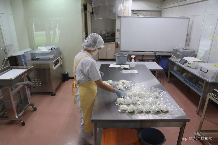 Furano Cheese Factory3