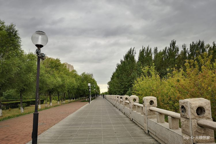沿江公園1