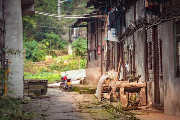 Yankou Ancient Town4