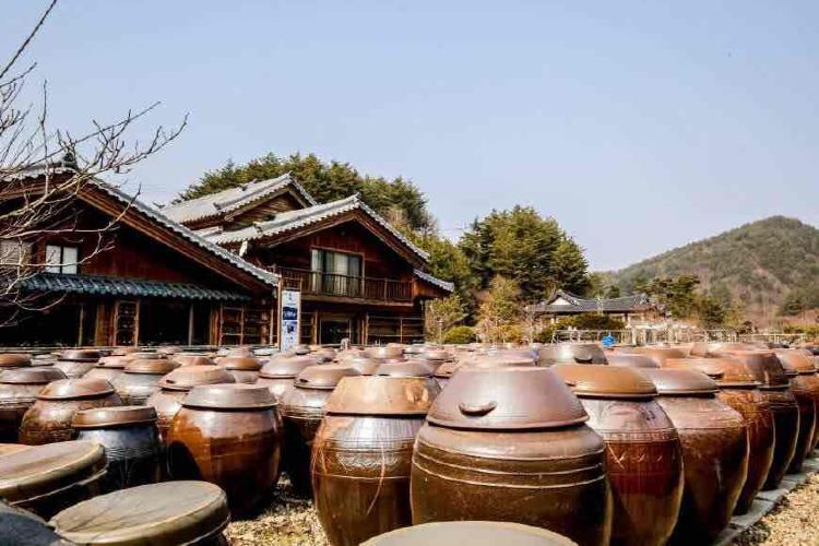 Korea Traditional Food Culture Experience Center2