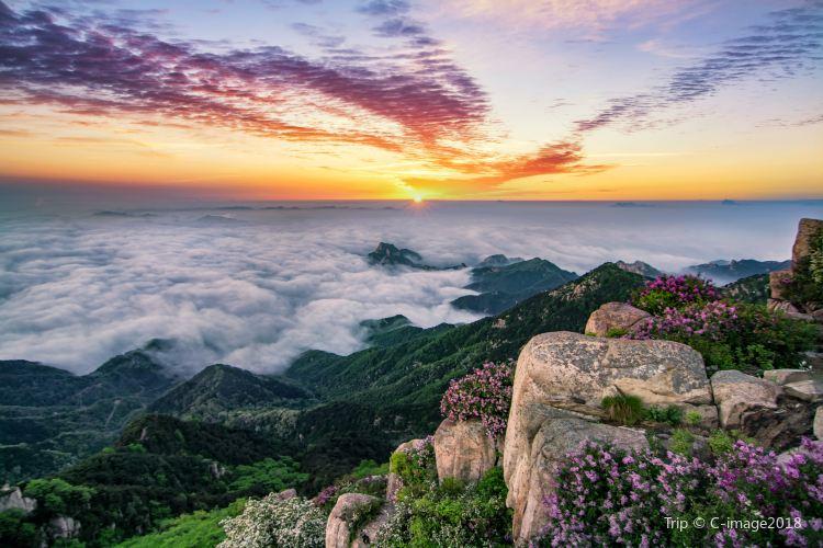Mount Tai Scenic Area4