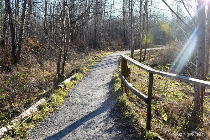 Maplewood Flats Conservation Area