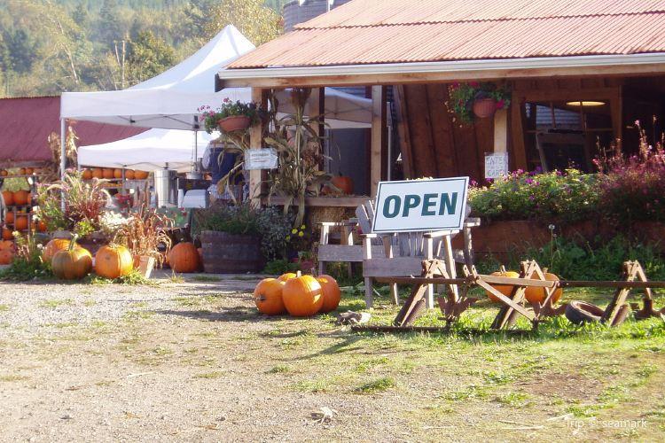 Fall City Farms2
