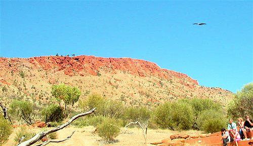 Alice Springs Desert Park1