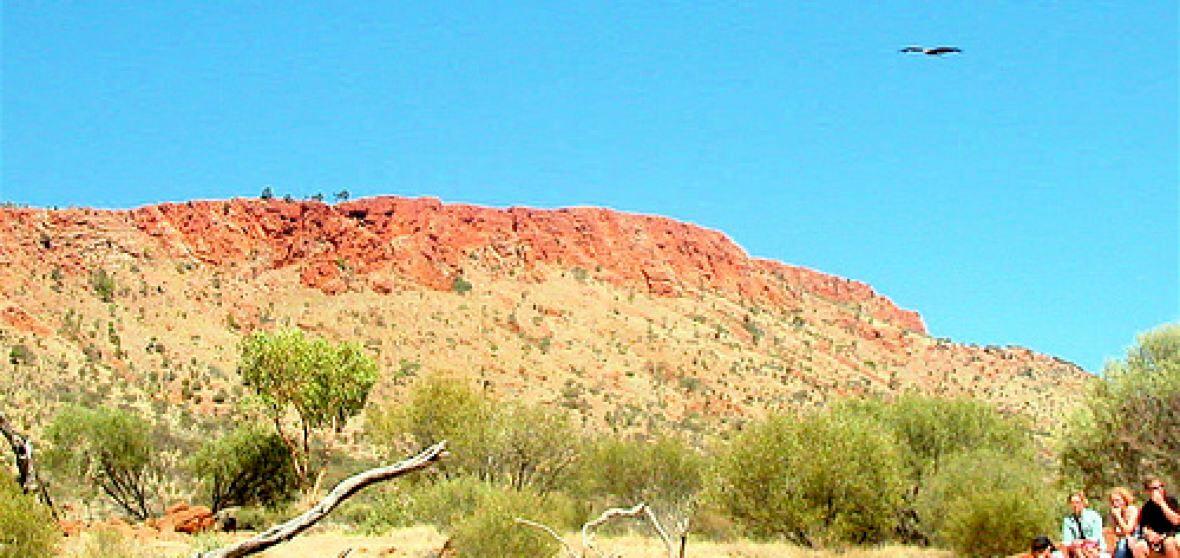 Alice Springs Municipality