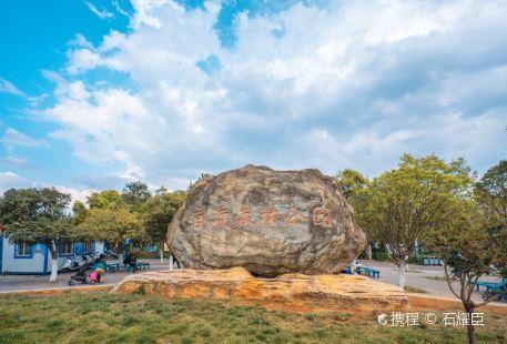 Guandu Forest Park