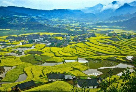 Pingli Taohuaxi Scenic Area