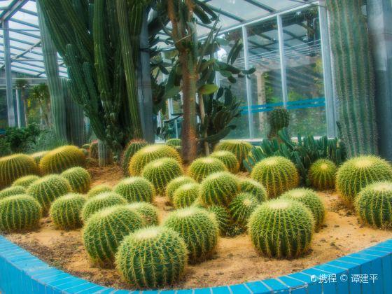 Nanyaredai Botanical Garden