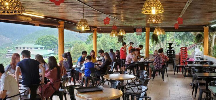 Cameron Valley Tea House 21