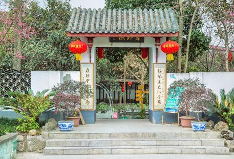 Yongkang Forest Park