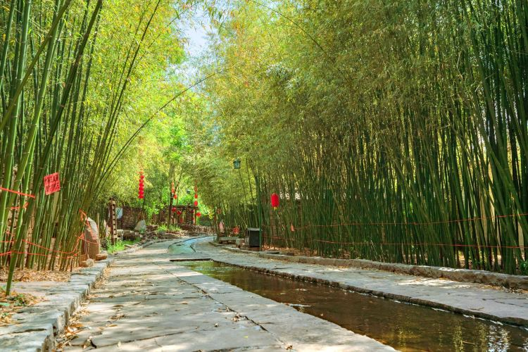 Bamboo Spring Village1