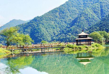 Across the Three Rivers • Jiande Green Road