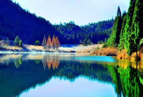 鳳陽山自然保護區