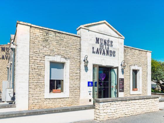 薰衣草博物館