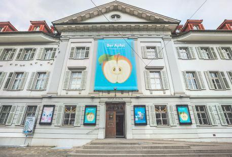 盧塞恩自然博物館
