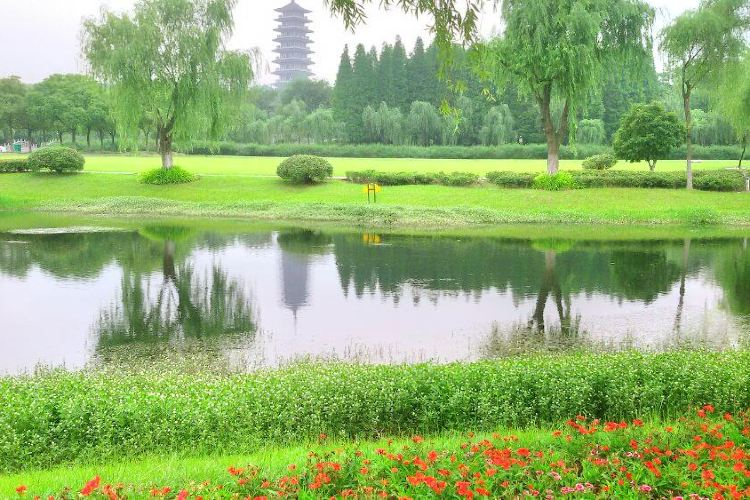 宜興國家森林公園