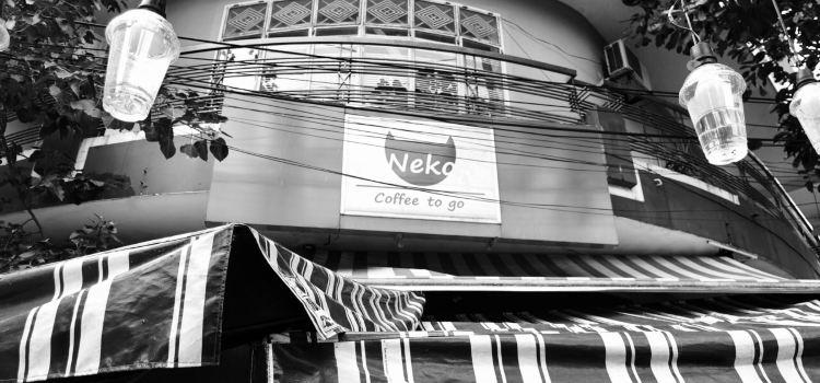 Cafe Neko2