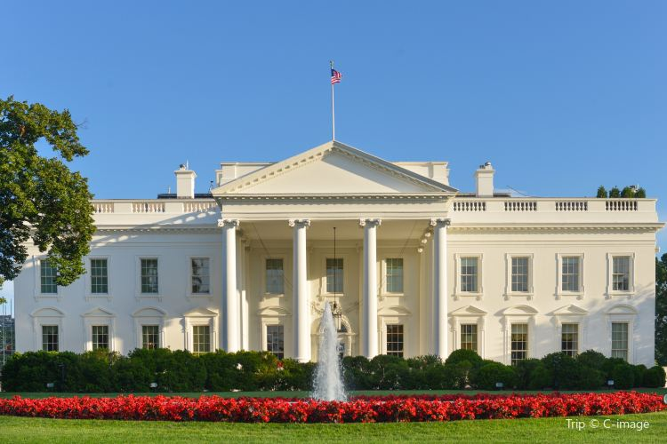 The White House1