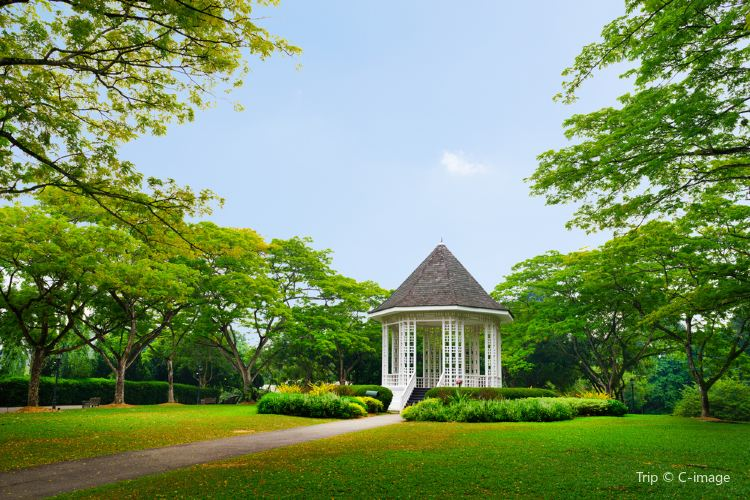Botanical Garden (Botanischer Garten)3
