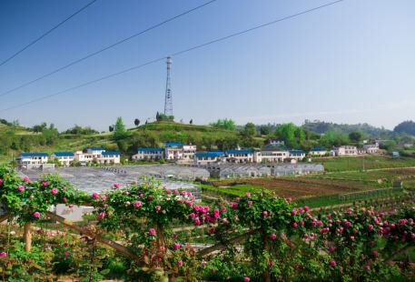 Huaqian Valley Garden of Agriculture and Technology