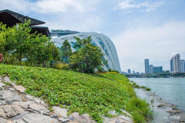 Marina Barrage1