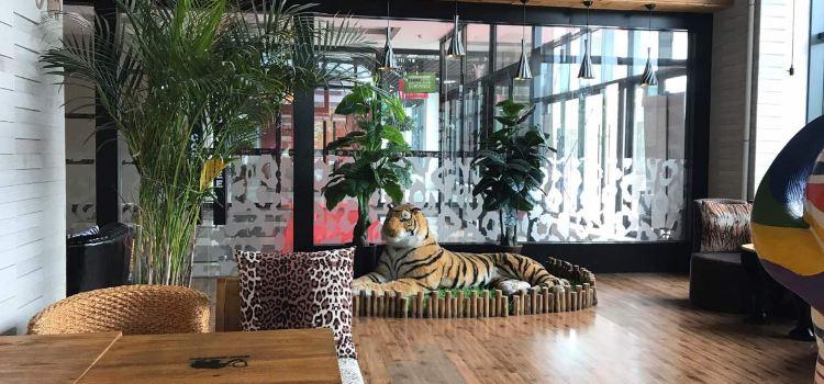 zoo coffee(大學店)