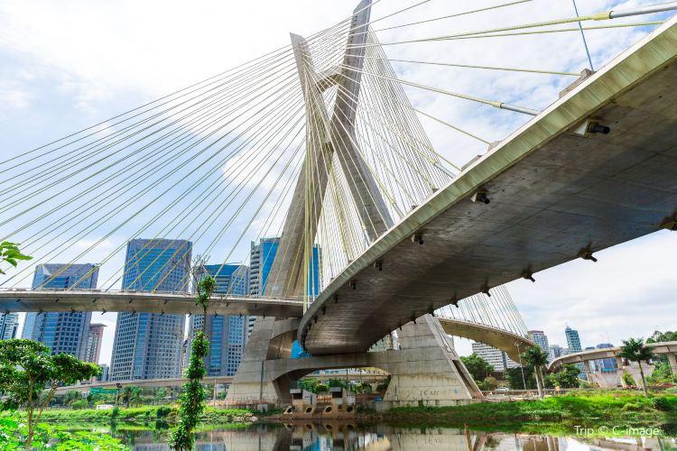 奧克塔維奧·弗裡亞斯·德奧利韋拉大橋1