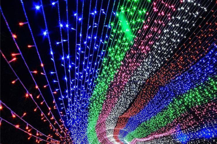 Luozhuang Shengneng Amusement Park