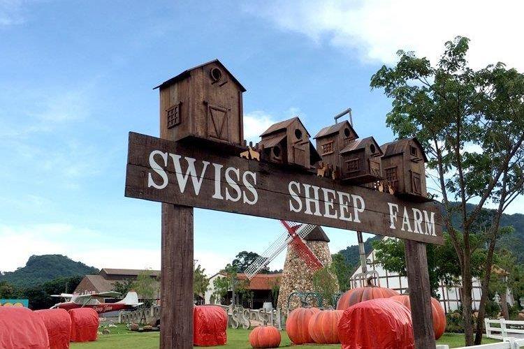芭提雅瑞士綿羊牧場3