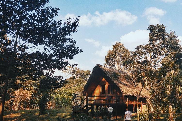 Andasibe-Mantadia National Park1