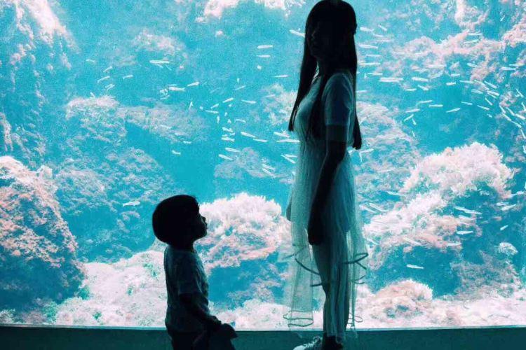 鹿兒島水族館3