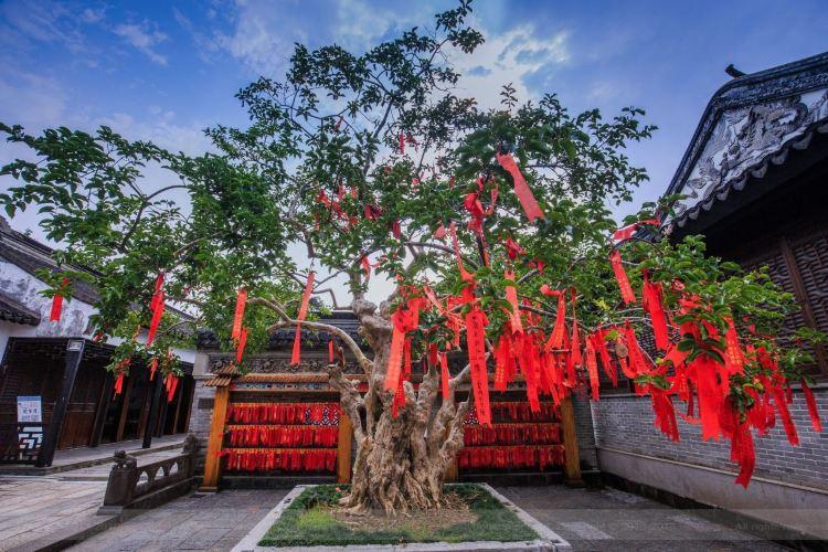 Zhongshan Mansion Garden1