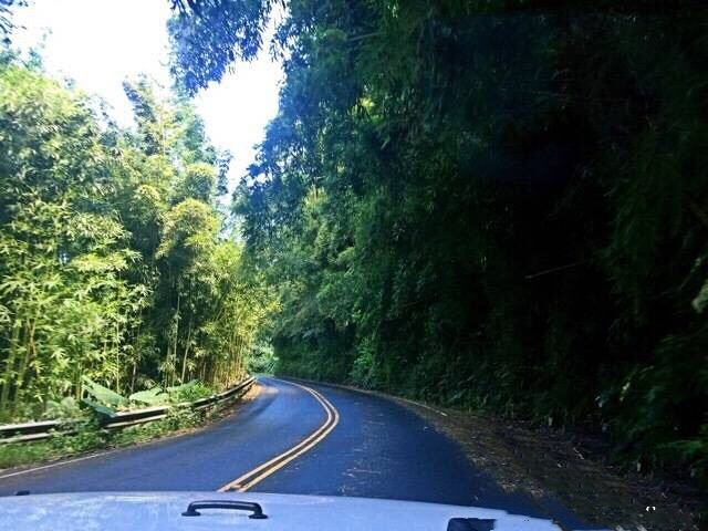 Road to Hana2