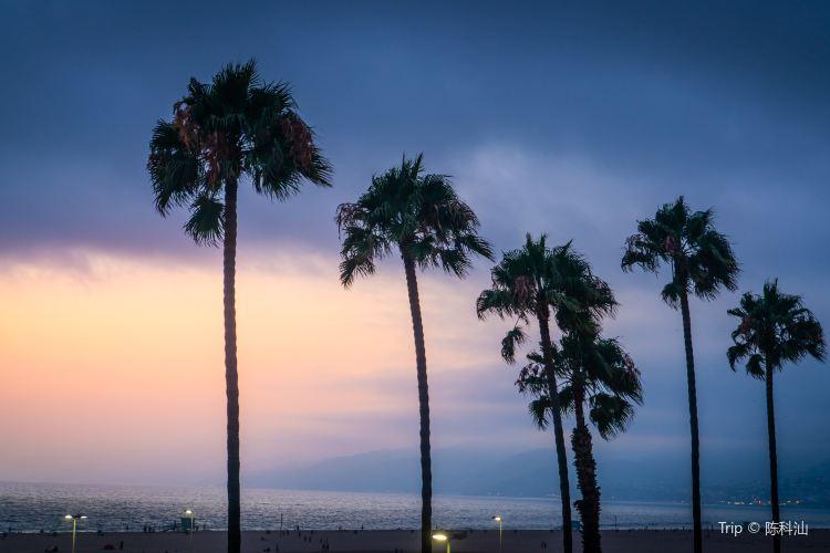 聖莫尼卡海灘4