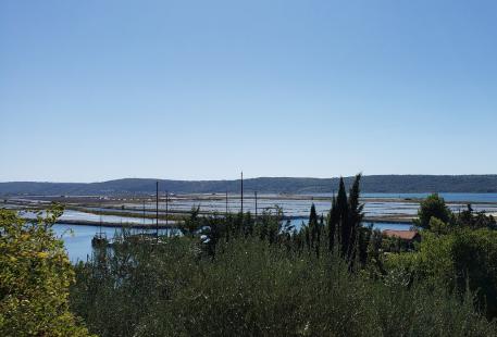 Parco Naturale delle Saline di Sicciole