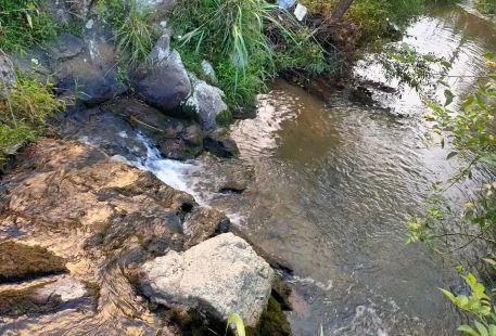 國家森林公園紅安縣天台山九焰山避暑山莊