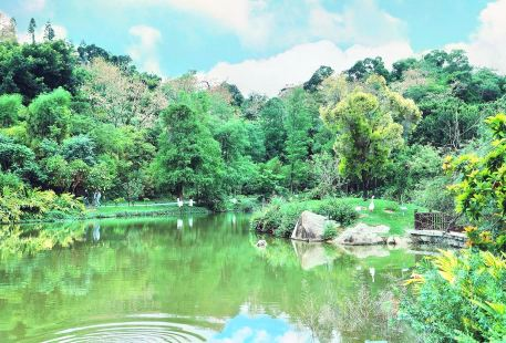 Chengshi Forest Theme Park