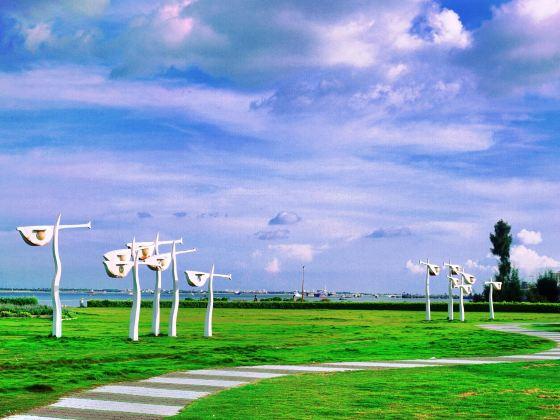 Sea Viewing Promenade