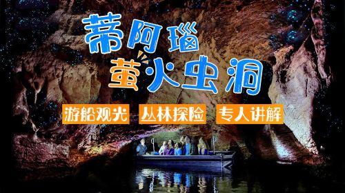 Anau Glowworm Caves